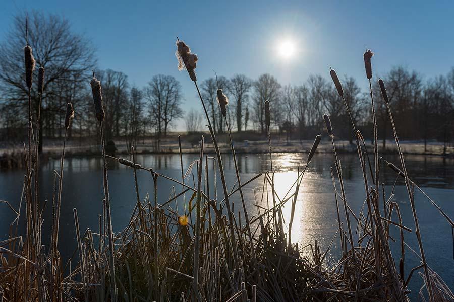 Sonnenaufgang über den Feldern in Gross Schwanensee