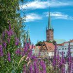 Der Petriturm von Blumen umrahmt