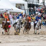 Polo-Pferde in Aktion