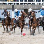 Polo-Spieler auf dem Spielfeld