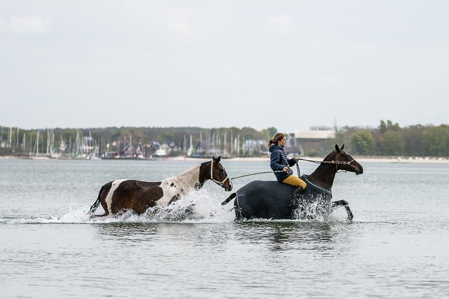 Neben der Pony-Line in der Ostsee