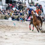 Schnelle Polo-Pferde